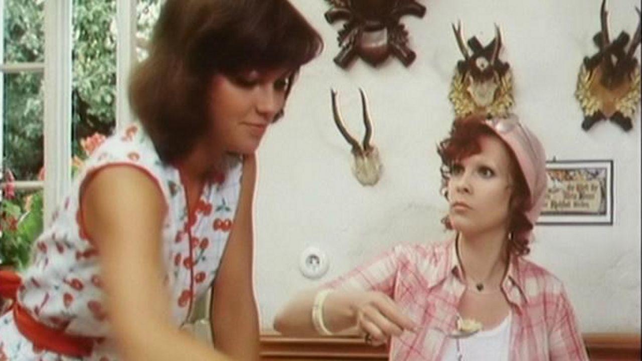 Geh, zieh dein Dirndl aus (1973)   Teljes filmadatlap
